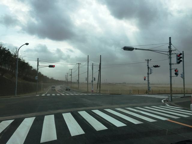 春の嵐・・・! 彡 彡 (((ノ; ̄д)ノ彡 彡 アラシ~!!