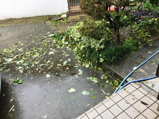 台風の暴風で・・・ o|`┏ω┓´|ノ_彡☆ブーブー!!